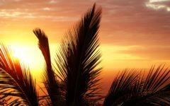 raj na wyciągnięcie ręki